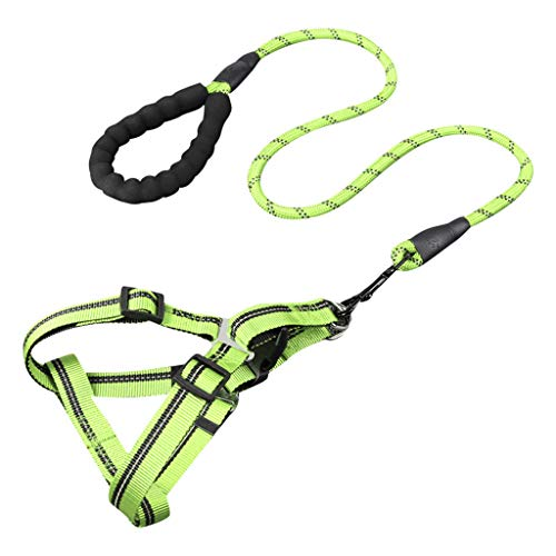 Topgee Pet Collars - Supplies Exquisite Adjustable Leashes Pet Adjustable Cute Collars Fashion Pet Supplies Exquisite Adjustable Dog & Cat for Small Medium Large Size]()