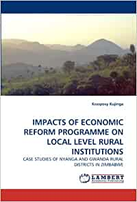IMPACTS OF ECONOMIC REFORM PROGRAMME ON LOCAL LEVEL RURAL ...