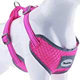 ThinkPet Reflective Breathable Soft Air Mesh No Pull Puppy Choke Free Over Head Vest Ventilation Harness for Puppy Small Medium Dogs and Cats Neon Rosary Neck 8-12 in/Chest 12-17 in