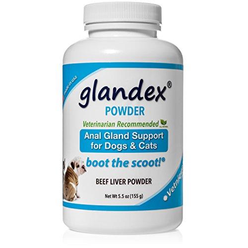 Glandex Powder 5.5 oz, Anal Gland Fiber, Pumpkin & Probiotic Digestive Supplement for Dogs & Cats by Glandex