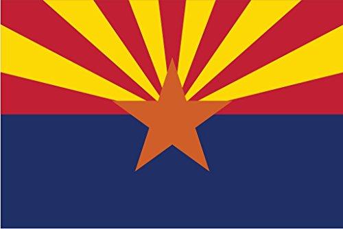 Desert Cactus Arizona AZ State Flag Sticker Decal Variety Size Pack 8 Total Pieces Kids Logo Scrapbook Car Vinyl Window Bumper Laptop V