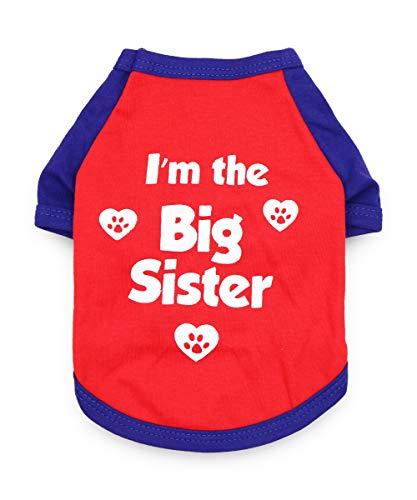 DroolingDog Dog Big Sister T-Shirt Puppy Clothes for Small Dogs Girl Boy, Medium, Red
