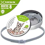 The Stock Pile Dewel All Cat Dog Collar Anti Flea
