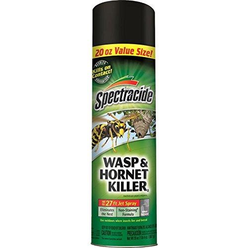 (Spectrum Cutter Wasp & Hornet Killer Aerosol 20Oz)