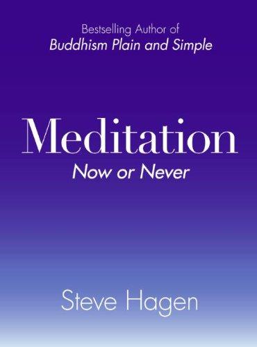Meditation Now Never Steve Hagen product image