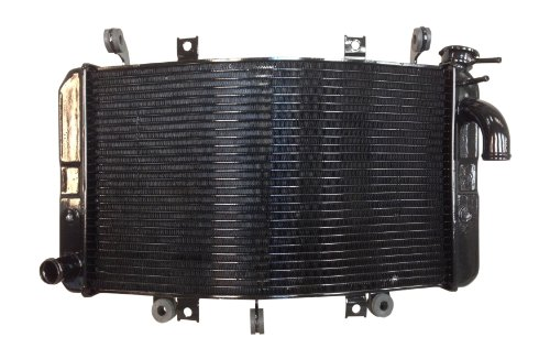 2008 Suzuki Hayabusa Motorcycle (SUZUKI 2008 - 2016 HAYABUSA GSX1300R OEM REPLACEMENT RADIATOR (NEW))