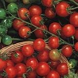 Tiny Tim Tomato 125 Seeds - GARDEN FRESH PACK!