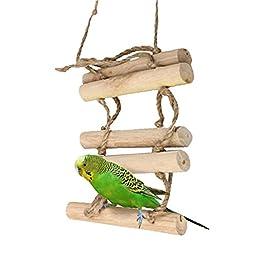 Pets Fun Time(TM) Rope Ladder Bird Toy