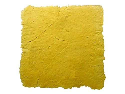 - Walttools 3 x 3 ft Seamless Concrete Stamp Texturing Skin Single - Concrete, Cement, Overlay (Outback Stone)