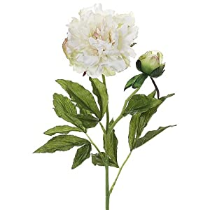 "28"" Silk Peony Flower Spray -Cream/Green (pack of 12) 60"