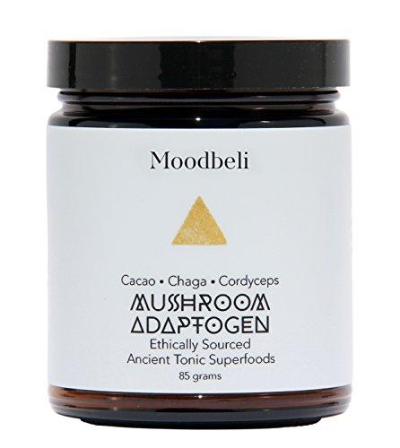 Moodbeli - Organic Mushroom Adaptogen: Cacao Chaga Cordyceps (2.99 oz/85 g) by Moodbeli