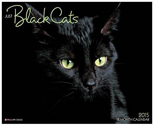 By Willow Creek Press Just Black Cats 2015 Wall Calendar (Wal) [Calendar] ebook
