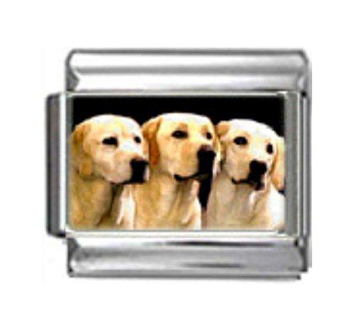 Stylysh Charms Labrador Retriever Dogs Photo Italian 9mm Link LinkDG265