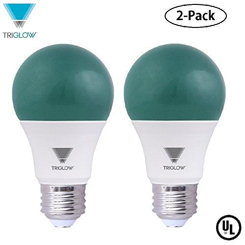 Green Led Light Bulb in Florida - 4