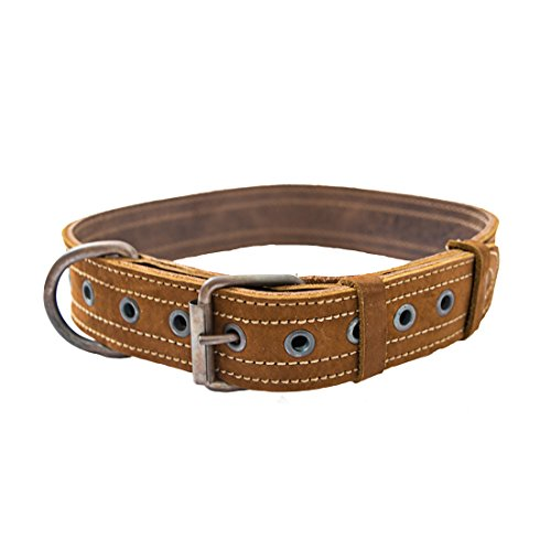 Hide & Drink Leather Dog Collar for Medium Size Dog (12 to 21 Inches) Handmade Swayze Suede