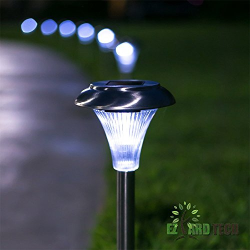 Landscape Lighting Around A Pool - 5