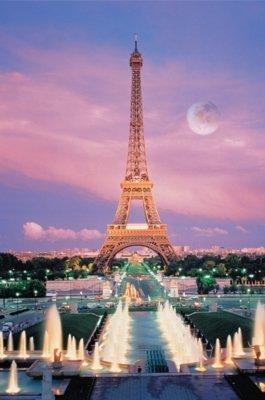 Tomax 1000 Piece Eiffel Tower Glow-in-the-dark Jigsaw Puzzle]()