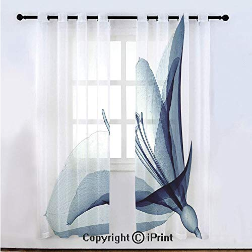 """Xray Flower Semi Sheer Voile Window Curtain With Drapes Grommet,X ray Inspired Transparent Image of Amaryllis Flower Nature Decorating Artwork,for Bedroom,Living Room & Kids Room(108""""W x 63""""L) Teal Wh"""