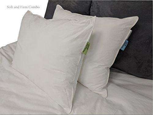 Pillows Similar to Choice Hotels (Standard (20''x26''), Soft) by Pillowtex (Image #1)