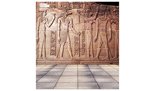 Laeacco 10x10FT Vinyl Photography Background Antike Ancient Egyptian Sculpture Wall Historic Square Tile Floor Background Children Adults 3(W) x3(H) m Backdrop for Video Photo Studio Props