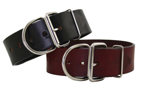 2 inch Tuff Stuff Dog Collar - 2 colors available - Burgundy 2in wide x 18in long