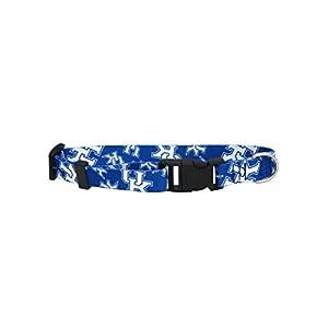 NCAA Kentucky Wildcats Team Pet Collar, Medium