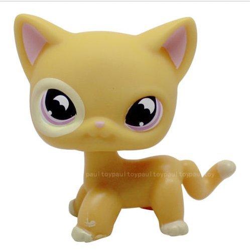 Littlest Pet Shop Rare Yellow Orange Shorthair Cat Purple Moon Eyes LPS (Shorthair Cat)