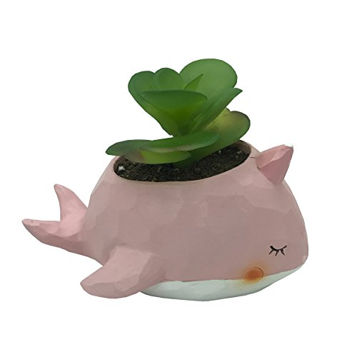Cuteforyou Cute Animal Shaped Cartoon Home Decoration Succulent Vase Flower Pots (Whale (Pink))