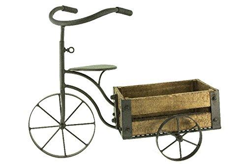 Renaissance 2000 Measures Bicycle Cart Flower Holder, 20.5