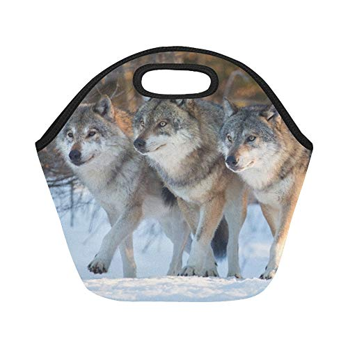 Insulated Neoprene Lunch Bag Three Wolves Marching Together