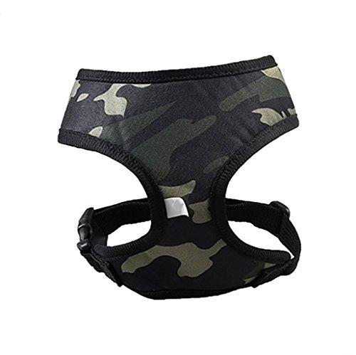 Promotion Pet Clothes Pet Dog Harness JOYFEEL Soft Mesh Belt Vest Adjustable Soft Breathable Dog Summer T-Shirt Puppy Vest Rope Dog Chest Strap Leash Set (M, ()