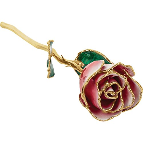 Roxx Fine Jewelry 24K Gold Trimmed Red & White Frozen Rose Real Long Stemmed Rose Many Colors - Colour Roxx