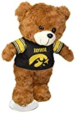 Iowa 2015 Large Fuzzy Uniform Bear