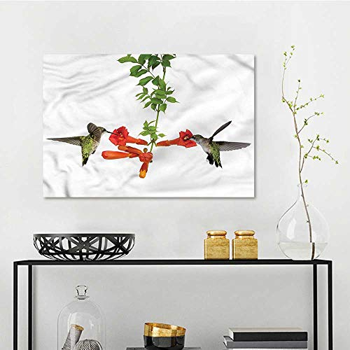 Vineyards Nectar (one1love Hummingbirds Printing Oil Painting Hummingbird Nectar Sip A for Your Relatives and Friends W31 xL23)