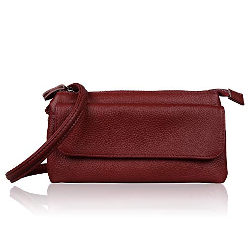 (Befen Leather Wristlet Clutch Smartphone Crossbody Wallet with Card Slots/Shoulder Strap/Wrist Strap (Jester Red Large))