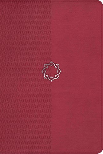 NKJV Essential Teen Study Bible, Rose LeatherTouch (Bible Teen Study Extreme)