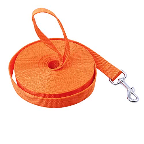 YAODHAOD Dog Obedience Recall Training Agility Lead,Single Thick Deluxe Nylon Lead with Swivel Snap - Training, Walking, Camping Lead Medium & Large Dogs (32 Foot, Orange)