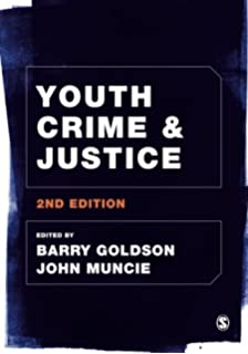 Youth crime and the media dissertation ideas?