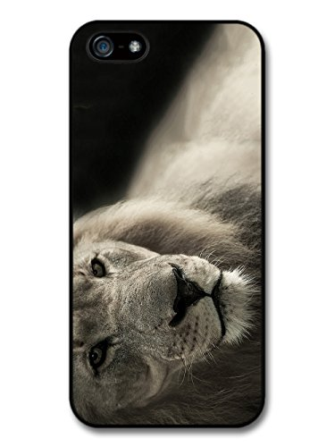Cool Cute Lion Photography Wild Animal Nature in Black and White case for iPhone 5 5S