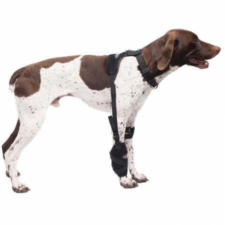 Caldera Pet Therapy Universal Wrap Carpal/Elbow with Gel, Medium, Black
