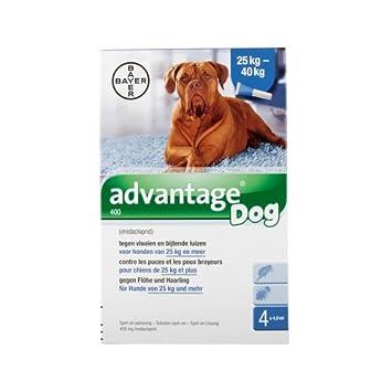 Advantage 400 (perros 25 - 40 kg) - 4 pipetas de 4 ml: Amazon.es: Productos para mascotas