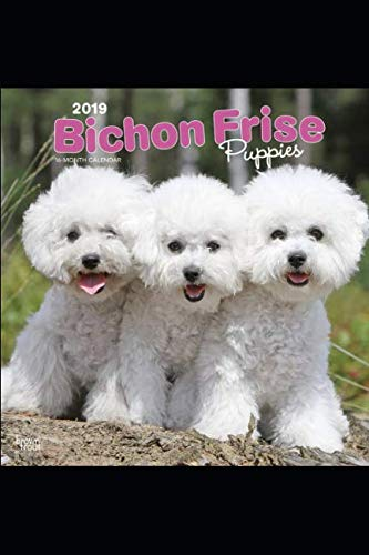Bichon-Frise-Dog-Breeds-Notebook-Journal-Diary-110-Pages-Blank-6-x-9