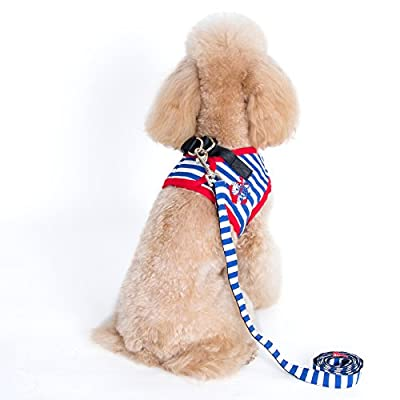 Alfie Couture Designer Pet Accessory - Vince Sailor Harness and Leash Set