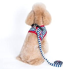 Alfie Pet by Petoga Couture - Vince Sailor Harness and Leash Set - Color: Blue Size: Small