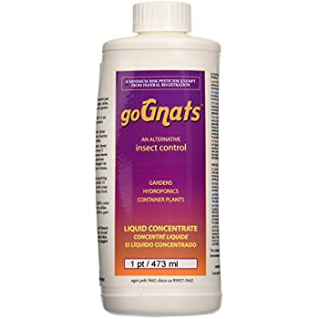 Earth Juice GoGnats Insect Control Liquid Concentrate, 1-Pint