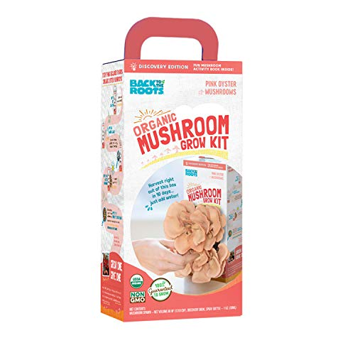 Back To The Roots Pink Oyster Mushroom Grow Kit, Harvest Gourmet Oyster Mushrooms In 10 days,Top Gardening Gift, Holiday Gift, & Unique Gift by Back to the Roots (Image #1)