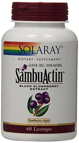 Solaray - Sambuactin Elderberry Extract, 60 ()