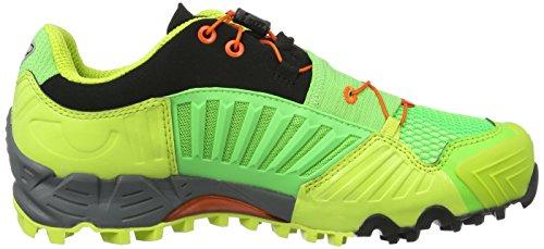 DYNAFIT Ms Feline GTX, Scarpe da Trail Running Uomo Verde (8825 Dna Green/General Lee)