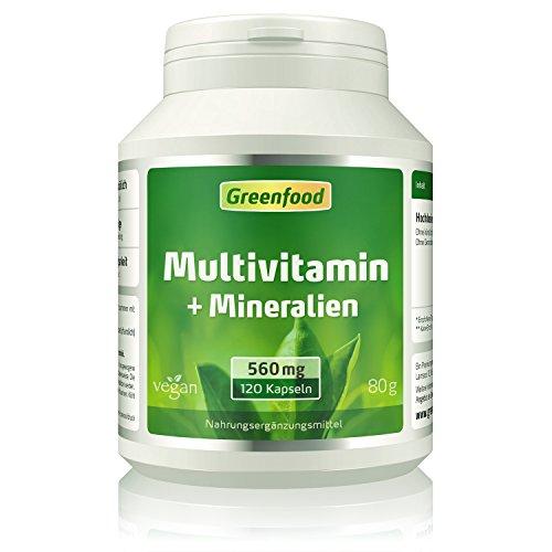 Multivitamin, 560 mg, 120 Kapseln, vegan - 100% Tagesbedarf an Vitaminen, Mineralien und Spurenelementen. Sehr hohe Bioverfügbarkeit!