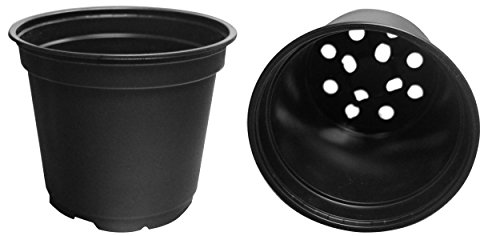 20 NEW 6 Inch Teku Plastic Nursery Pots - Standard ~ Pots ARE 6 Inch Round At the Top and 5 Inch Deep. Color: Black by Teku